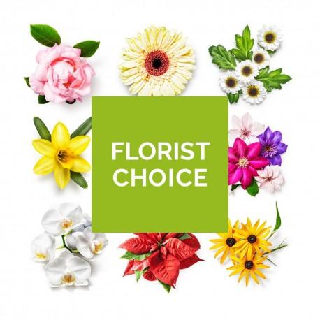 Florist Choice Flowers
